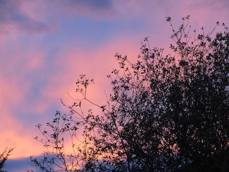 B2016 Sunset