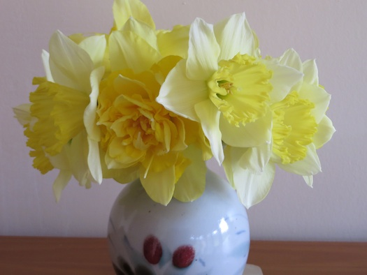 B2014 Daffodilsvase